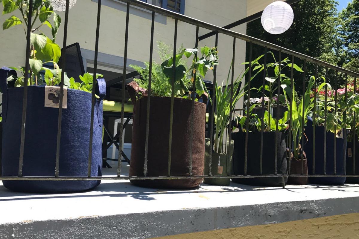 das ist urban gardening. Black Bedroom Furniture Sets. Home Design Ideas