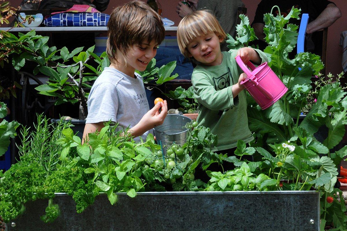 urban gardening in schule und kindergarten. Black Bedroom Furniture Sets. Home Design Ideas